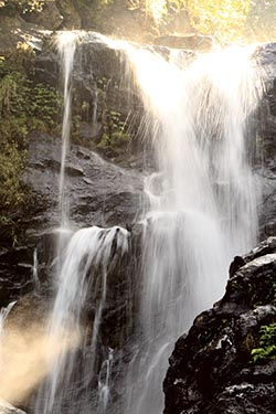 Nagarhole with Irpu Falls, India - travel experience, post